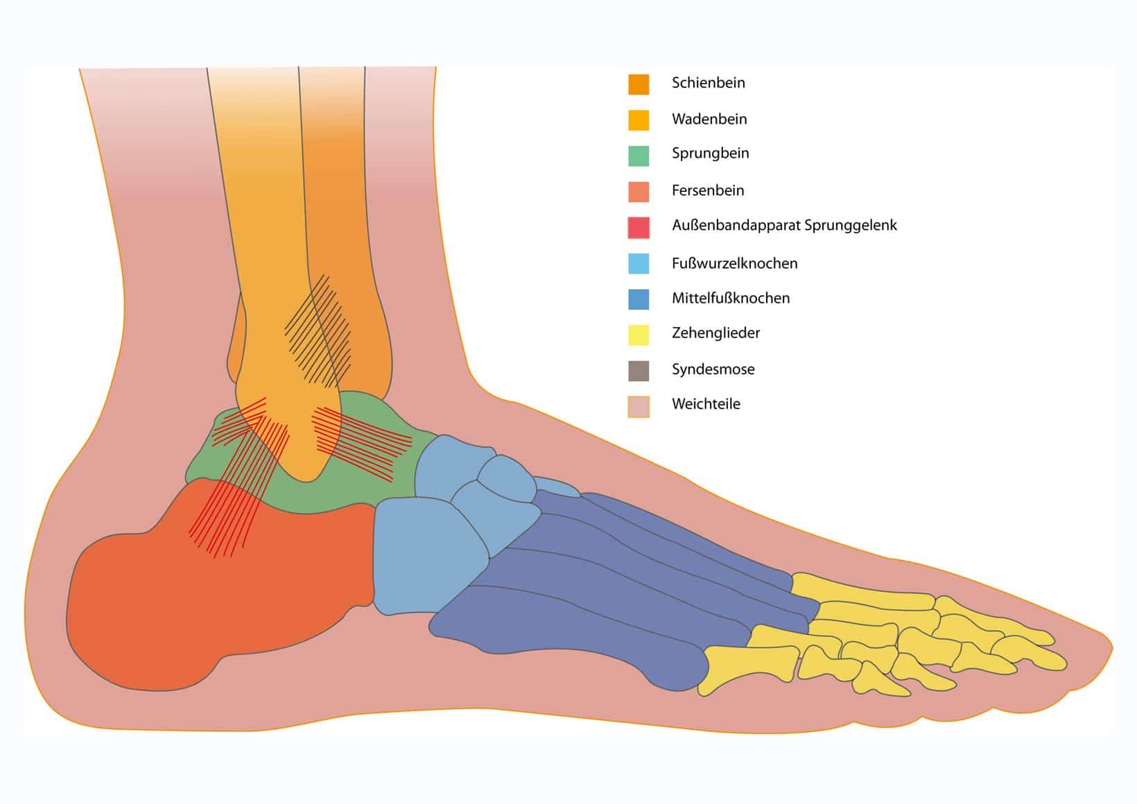 Schmerzen im Fuß